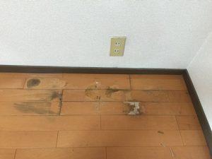 福岡市中央区でフローリングの水濡れしみ補修