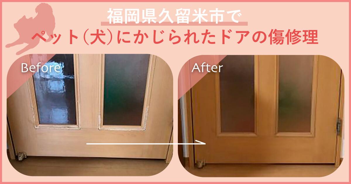 福岡県久留米市でペットにかじられたドアの傷修理-アイキャッチ